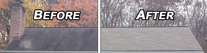 Before and after a Pressure Brothers roof cleaning